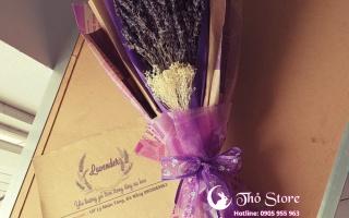 Những lợi ích bất ngờ của hoa Lavender cho sức khỏe của bạn