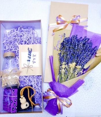 Combo Lavender + Tinh Dầu Lavender