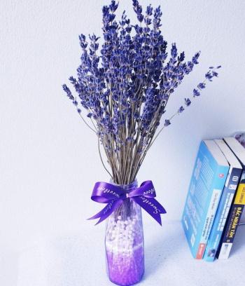 Lọ Lavender nhỏ để bàn